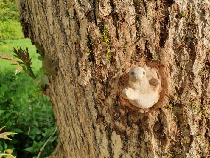 Mein Freund der Baum II und sein Baumtierchen Schorsch E.