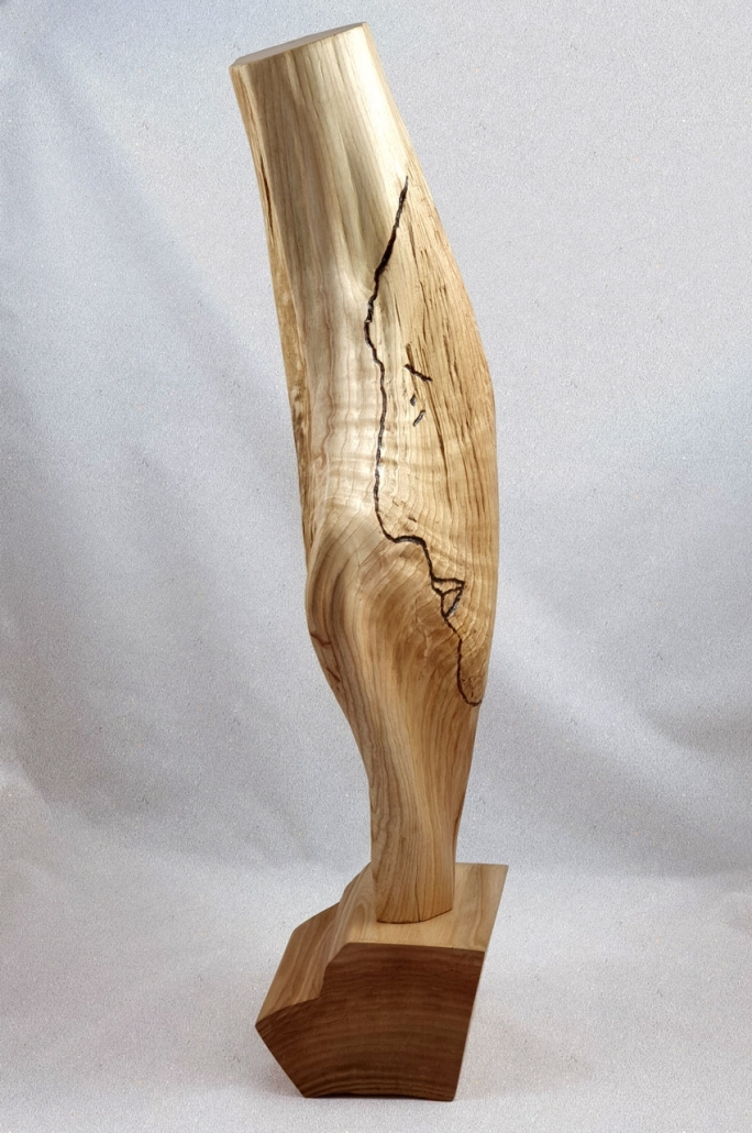 #33 wooden selfie
